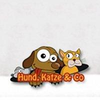 Hund, Katze & Co. 2019 Hamm