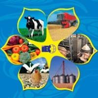 Agroforum 2019 Kiew