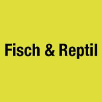 Fisch & Reptil 2020 Sindelfingen