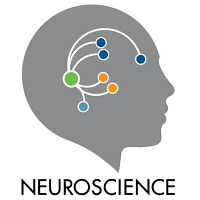 Neuroscience 2019 Chicago