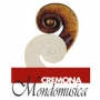 Cremona Mondomusica, Cremona