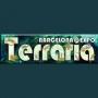 Expo Terraria