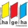 HaGeHa, Pirmasens